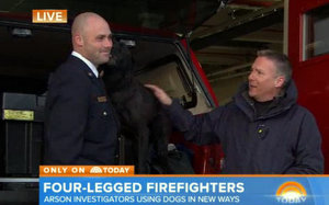 Labor In The News: DC Firefighter --and his dog -- on Today Show