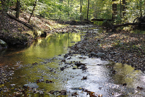 UFCW 1994 Joins Coalition to Protect MontCo Water Supply